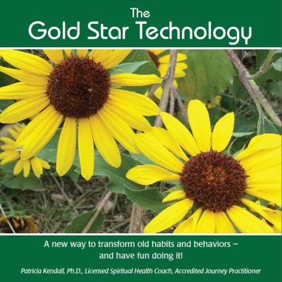 Gold Star Technology Cover